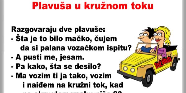 plavusa-u-kruznom-toku-1