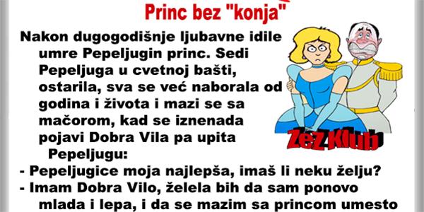 princ-bez-konja-2