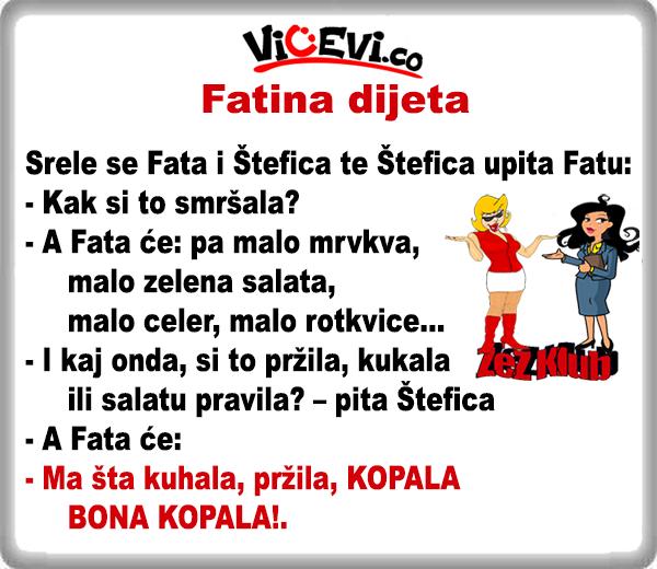 Fatina dijeta @ Vicevi o Bosancima, Vicevi o Hrvatima