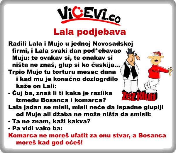 Lala podjebava @ vicevi o Vojvo]anima i Bosancima - Lala i Mujo