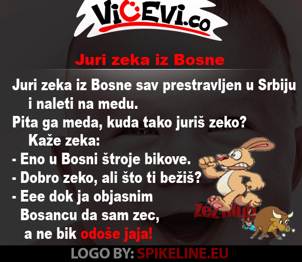 Juri zeka iz Bosne, 14 vicevi o Životinjama