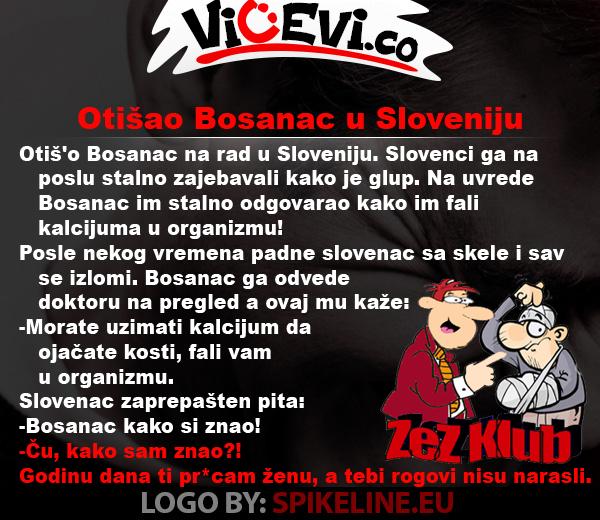 Otišao Bosanac u Sloveniju @ vicevi o Bosancima i Slovencima