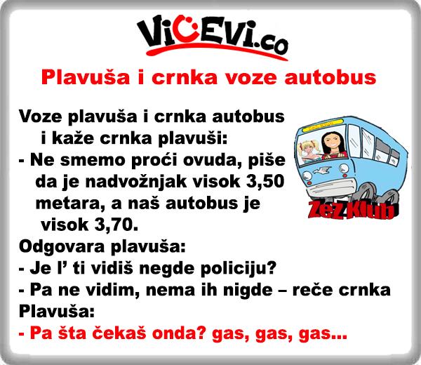 Plavuša i crnka voze autobus, vicevi o Plavušama