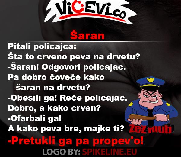 Šaran @ vicevi o Policajcima