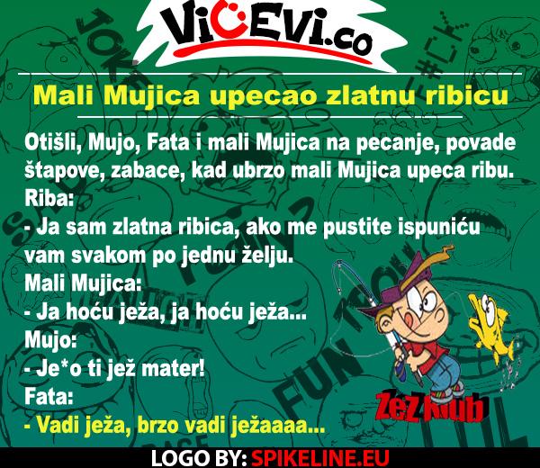 Mali Mujica upecao zlatnu ribicu, 159 vicevi o Bosancima