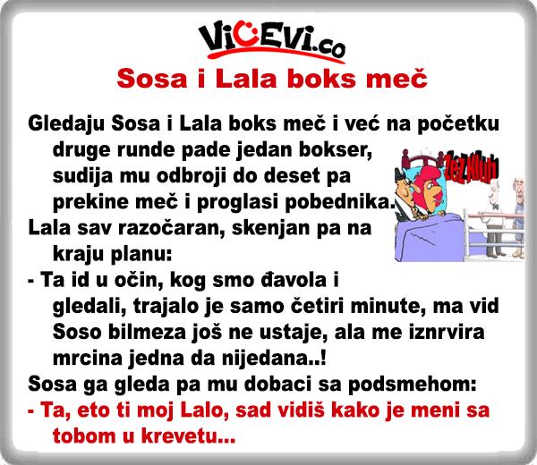 Sosa i Lala boks meč @ vicevi o Vojvođanima - vicevi o Sosi i Lali