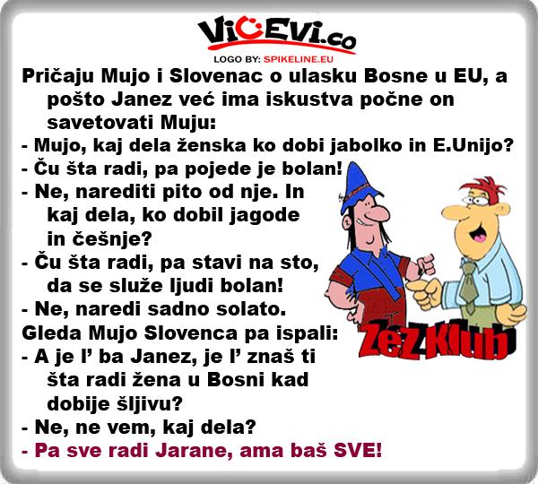 Pričaju Mujo i Slovenac o ulasku Bosne u EU @ vicevi Bosanci , Slovenci
