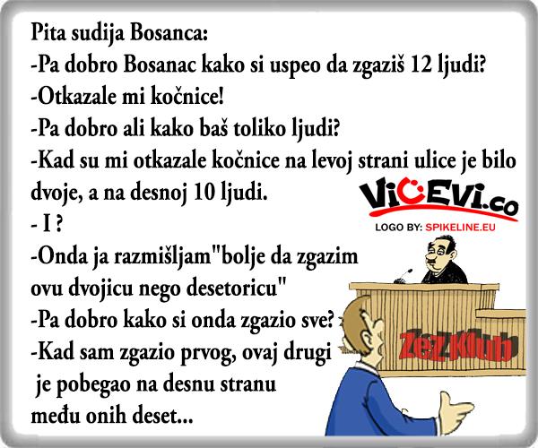 Bosanac na sudu @ vicevi o Bosancima