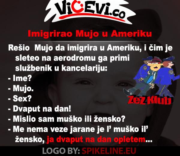 Imigrirao Mujo u Ameriku, vicevi o Bosancima
