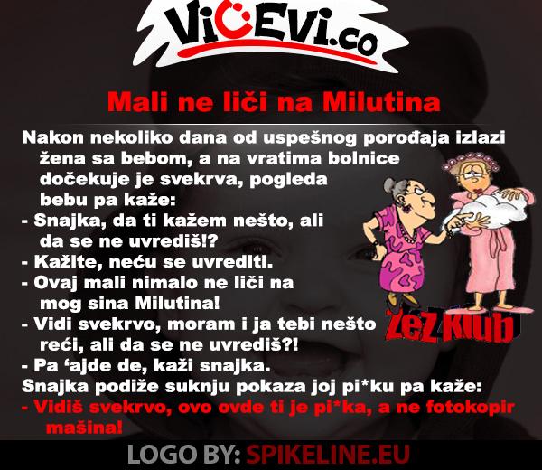 Mali ne liči na Milutina @ vicevi o Snajkama , Zetovima, svekrvama i taštama