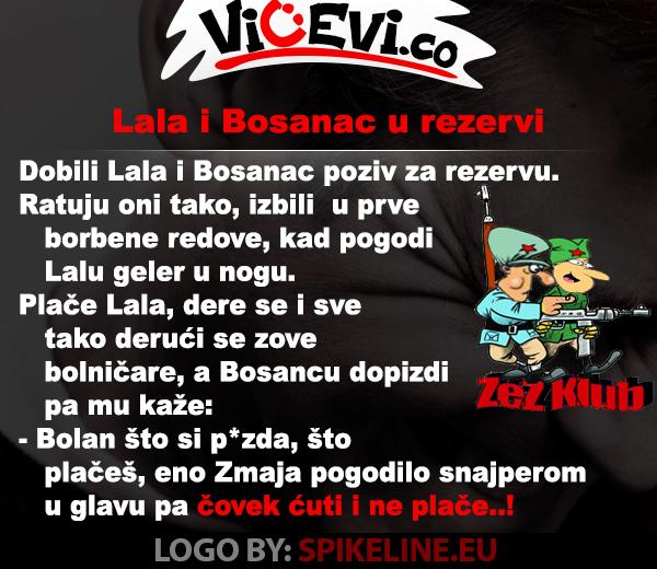 Lala i Bosanac u rezervi, vicevi o Bosancima, Vojvođanima