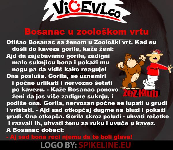 Bosanac u zoološkom vrtu @ vicevi o Bosancima