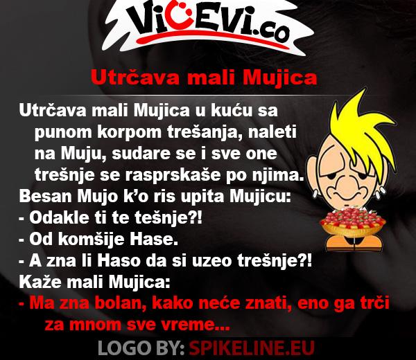 Utrčava mali Mujica, vicevi o Bosancima