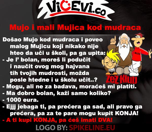 Mujo i mali Mujica kod mudraca, vicevi o Bosancima 156