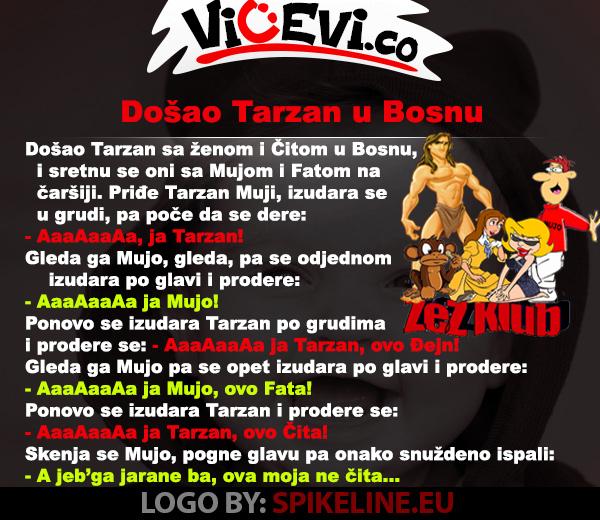 Došao Tarzan u Bosnu, vicevi o Bosancima