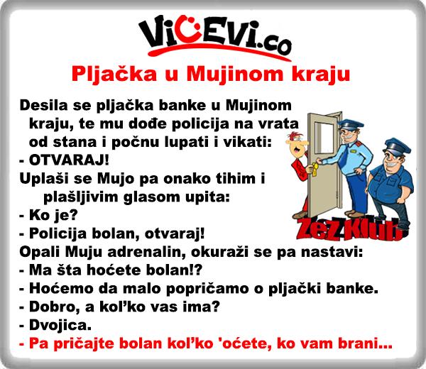 Pljačka u Mujinom kraju, vicevi o Policajcima, Bosancima