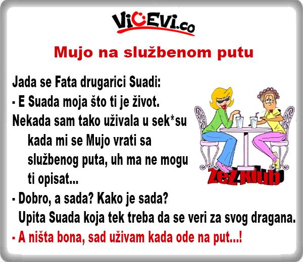 Mujo na službenom putu @ vicevi o Mužu i Ženi, vicevi o Bosancima