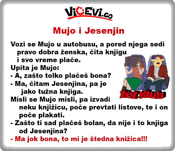 Mujo i Jesenjin, 167 vicevi o Bosancima
