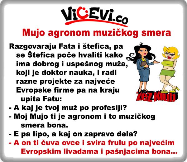 Mujo agronom muzičkog smera @ vicevi o Bosancima, Hrvatima