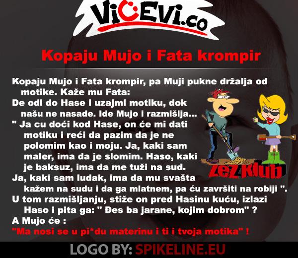Kopaju Mujo i Fata krompir @ vicevi o Bosancima, vicevi o Muji i Fati