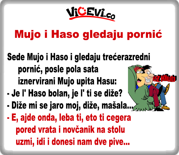 Mujo i Haso gledaju pornić , vicevi o Bosancima - vicevi o Muji i Hasi