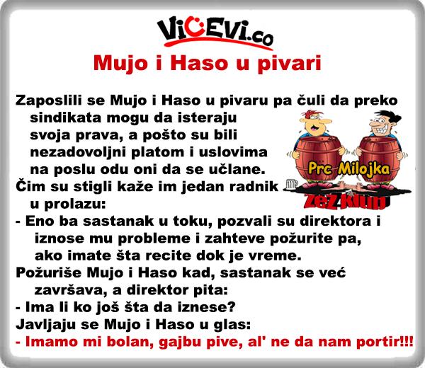 Mujo i Haso u pivari @ vicevi o Bosancima, vicevi o Muji i Hasi