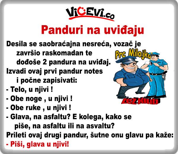 Panduri na uviđaju @ vicevi o Policajcima