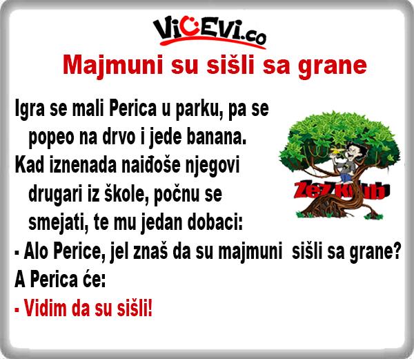 Majmuni su sišli sa grane @ Vicevi o Peric