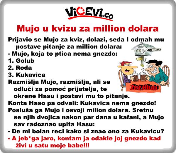 Mujo u kvizu za million dolara @ Vicevi o Bosancima