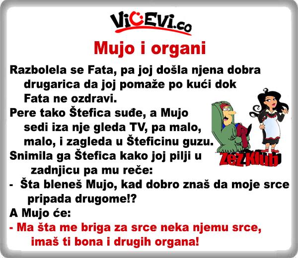 Mujo i organi @ Vicevi o Bosancima i Hrvatima