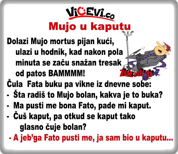 Mujo u kaputu @ Vicevi o Bosancima, vicevi o alkosima