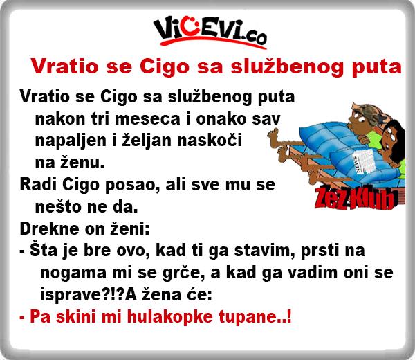 Vratio se Cigo sa službenog puta @ Vicevi o Cigi