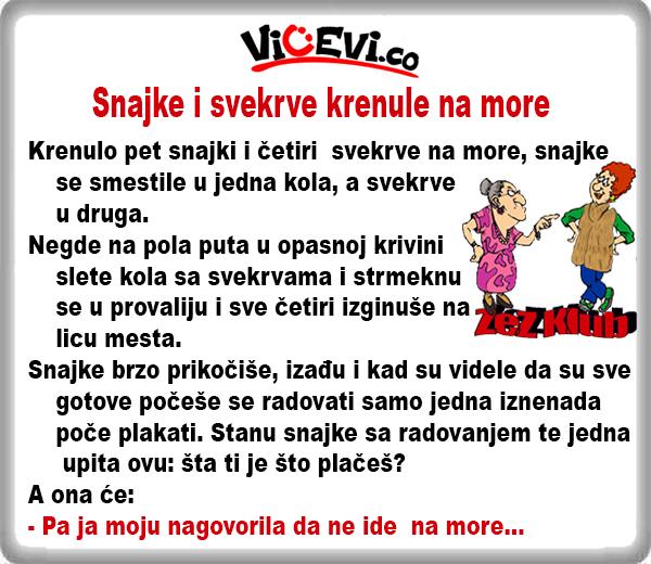 Snajke i svekrve krenule na more @ Vicevi o Snajkama i Zetovima, Vicevi o Snajkama i Svekrvama