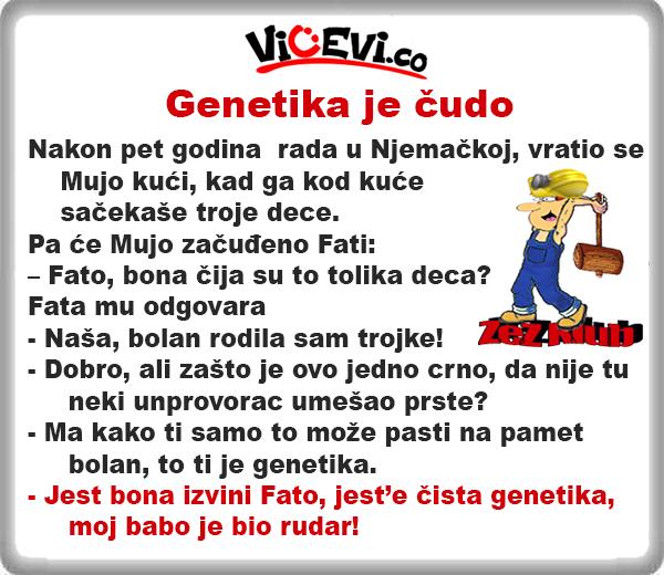 Genetika je čudo @ Vicevi o Bosancima