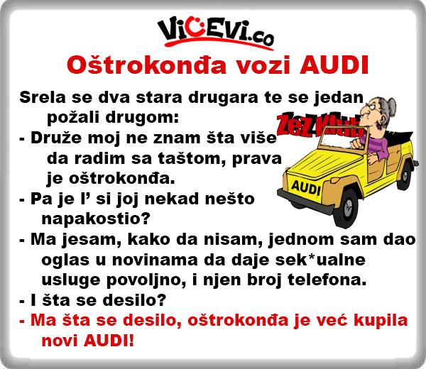 Oštrokonđa vozi AUDI @ Vicevi o taštama i zetovima, snajke, svekrve