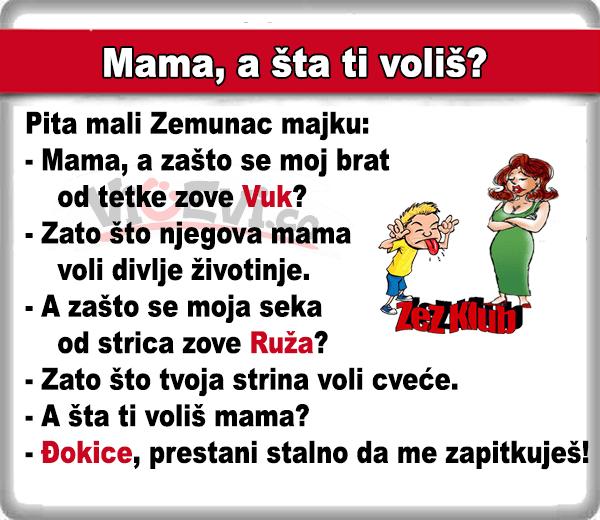 Mama, a šta ti voliš? @ 408 Vicevi o Zemuncima